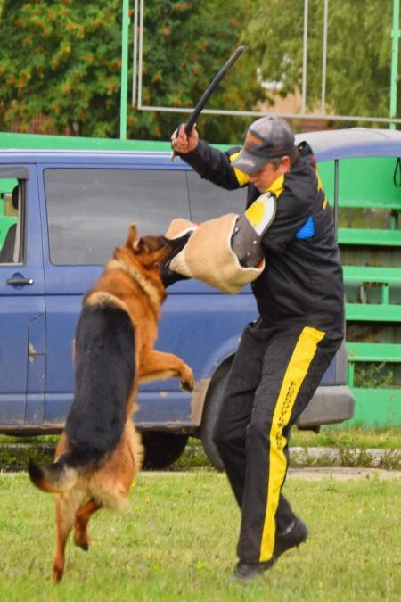 Защитно - караульная служба