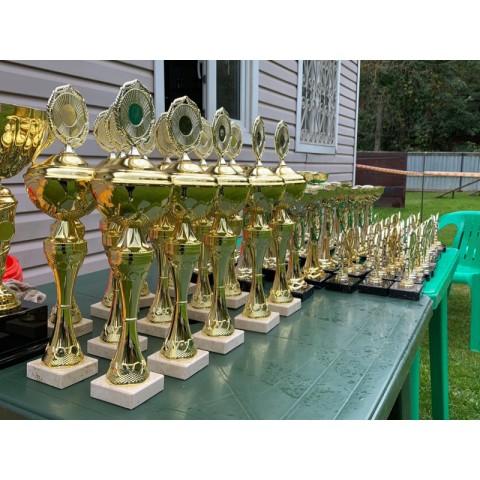 КАТАЛОГ Национальная выставка породы БОСЕРОН Ранг «Победитель Клуба» «День Босерона 2020»